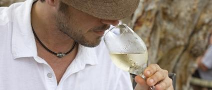 dégustation-vin-conciergerie-privée
